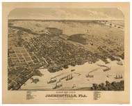 Jacksonville, Florida 1876 Bird's Eye View
