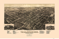 Tallahassee, Florida 1885 Bird's Eye View