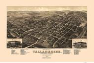 Tallahassee, Florida 1885 Bird's Eye View