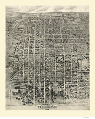 Tallahassee, Florida 1926 Bird's Eye View