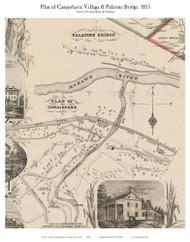Canajoharie Village & Palatine Bridge, New York 1853 Old Town Map Custom Print - Montgomery Co.