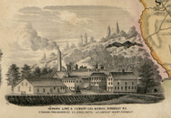 Newark Lime & Cement Cos. Works, New York 1853 Old Town Map Custom Print - Ulster Co.
