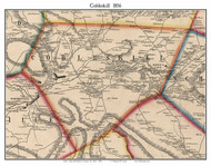 Cobleskill, New York 1856 Old Town Map Custom Print - Schoharie Co.