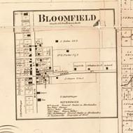 Bloomfield - Edgar Co., Illinois 1870 Old Town Map Custom Print - Edgar Co.
