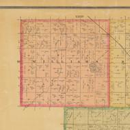 Williams, Iowa 1884 Old Town Map Custom Print - Calhoun Co.