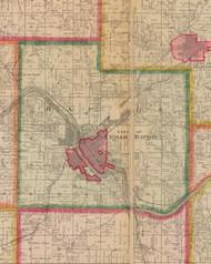 Rapids, Iowa 1881 Old Town Map Custom Print - Linn Co.