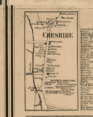 Cheshire Village, New York 1859 Old Town Map Custom Print - Ontario Co.
