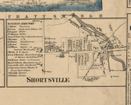 Shortsville Village, New York 1859 Old Town Map Custom Print - Ontario Co.