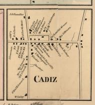 Cadiz Village, New York 1856 Old Town Map Custom Print - Cattaraugus Co.