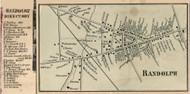 Randolph Village, New York 1856 Old Town Map Custom Print - Cattaraugus Co.
