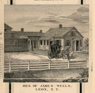 Wells Residenc, Leon, New York 1856 Old Town Map Custom Print - Cattaraugus Co.