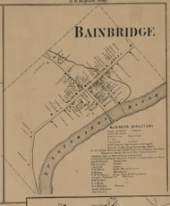 Bainbridge Village, New York 1863 Old Town Map Custom Print - Chenango Co.