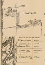 Bronson Village, Michigan 1858 Old Town Map Custom Print - Branch Co.