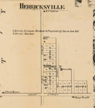 Herricksville, Michigan 1858 Old Town Map Custom Print - Branch Co.