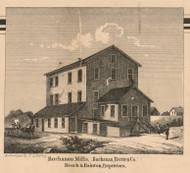 Buchanan Mills, Michigan 1860 Old Town Map Custom Print - Berrien Co.