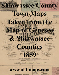 Map Cartouche, Shiawassee Co. Michigan 1859 Old Town Map Custom Print - Shiawassee Co.