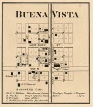 Buena Vista Village, Jackson, Indiana 1866 Old Town Map Custom Print - Hamilton Co.