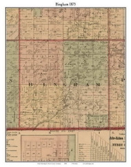 Bingham, Michigan 1875 Old Town Map Custom Print - Huron Co.