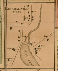 Parshallville, Michigan 1859 Old Town Map Custom Print - Livingston Co.