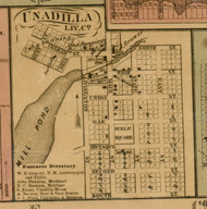 Unadilla Village, Michigan 1859 Old Town Map Custom Print - Livingston Co.