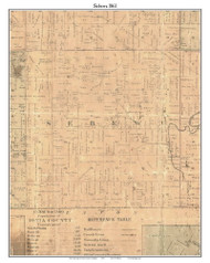 Sebewa, Michigan 1861 Old Town Map Custom Print - Ionia Co.
