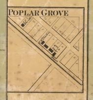 Poplar Grove Village, Franklin, Indiana 1866 Old Town Map Custom Print - Marion Co.