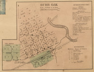 Burr Oak Village, Burr Oak, Michigan 1858 Old Town Map Custom Print - St. Joseph Co.