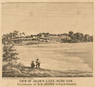 View of Adams Lake, Burr Oak, Michigan 1858 Old Town Map Custom Print - St. Joseph Co.