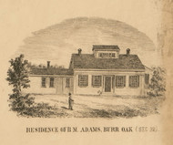 Adams Residence, Burr Oak, Michigan 1858 Old Town Map Custom Print - St. Joseph Co.