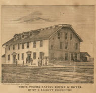 White Pigeon Hotel, White Pigeon, Michigan 1858 Old Town Map Custom Print - St. Joseph Co.