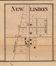 New Lisbon Village, Jackson, Indiana 1865 Old Town Map Custom Print - Randolph Co.