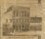 Minnie Block, Port Huron City, Port Huron, Michigan 1859 Old Town Map Custom Print - St. Claire Co.