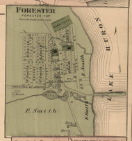 Forester Village, Forester, Michigan 1876 Old Town Map Custom Print - Sanilac Co.