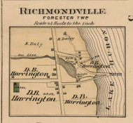 Richmondville Village, Forester, Michigan 1876 Old Town Map Custom Print - Sanilac Co.