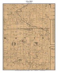 Ovid, Michigan 1864 Old Town Map Custom Print - Clinton Co.