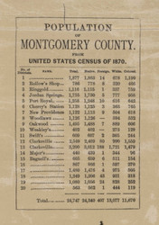 Population Statistics, Montgomery County, 1877 Old Town Map Custom Print