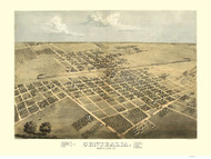 Centralia, Illinois 1869 Bird's Eye View