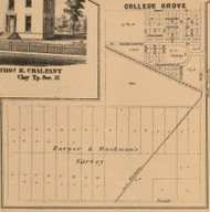 College Grove, Indiana 1863 Old Town Map Custom Print - St. Joseph Co.