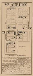 Mt Auburn, Jackson, Indiana 1866 Old Town Map Custom Print - Shelby Co.