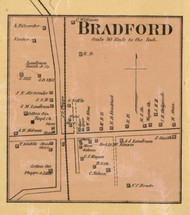 Bradford Village, District 14, Tennessee 1877 Old Town Map Custom Print Gibson Co.