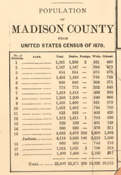 Population Statistics, Madison County, Tennessee 1877 Old Town Map Custom Print