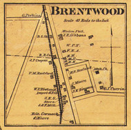 Brentwood Village, District 15, Tennesee 1878 Old Town Map Custom Print Williamson Co.