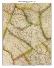 Orangeburgh District, 1822 South Carolina - Wilson - Old Map Reprint
