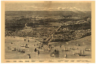 Chicago, Illinois 1871 Bird's Eye View - Davis - Chicago as it was before the Great Fire