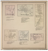 Rensselaerville, Preston Hollow, Cooksburgh, Chesterville, South Westerlo, and Medusa Villages, Albany Co., New York 1866 - Old Town Map Reprint - Albany & Schenectady Cos. Atlas