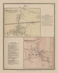 Big Flats Village & Breesport, New York 1869 - Old Town Map Reprint - Chemung Co. Atlas