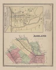 Ashland, New York 1869 - Old Town Map Reprint - Chemung Co. Atlas