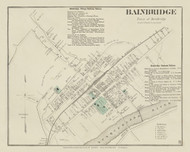 Bainbridge Village, New York 1875 - Old Town Map Reprint - Chenango Co. Atlas