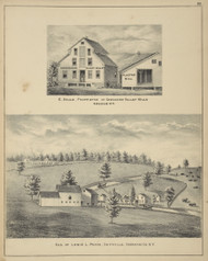 Chenango Valley Mills and Residence of Lewis L. Pease, New York 1875 - Old Town Map Reprint - Chenango Co. Atlas