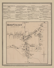 Rose Valley, New York 1874 - Old Town Map Reprint - Wayne Co. Atlas